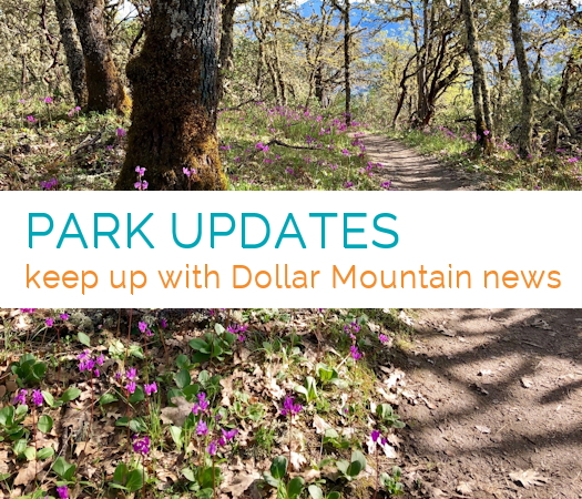 Park Updates  keep up with Dollar Mountain news