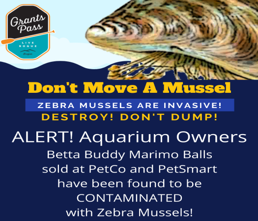 Dont Move A Mussel